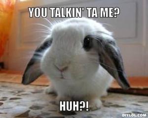 http://orleebaldedara.files.wordpress.com/2012/08/cute-bunny-meme-generator-you-talkin-ta-me-huh-93d525.jpg?w=300&h=240